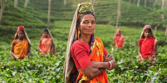 The Benefits Of Seeking Organic Fairtrade Goods